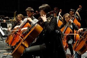 violoncelle © B. Adilon