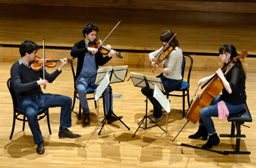 Quatuor à cordes © B. Adilon
