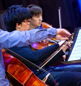violoncelleviolon