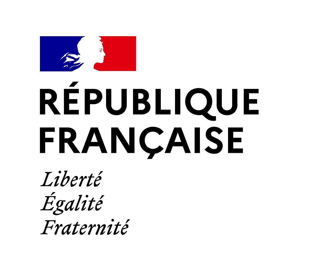 Logo Republique francaise